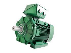 LSES IMfinity® AC motor - Leroy-Somer