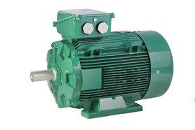 IMfinity® AC motor - Leroy-Somer