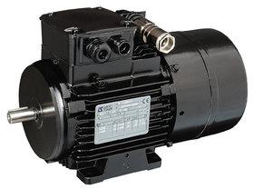 LSMV AC motor - Leroy-Somer