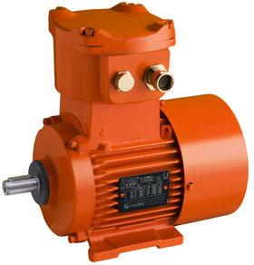 FLSD AC motor - Leroy-Somer