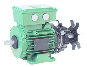 FFB AC motor - Leroy-Somer