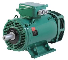 PLSES IMfinity® AC motor - Leroy-Somer