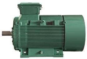 FLSES IMfinity® AC motor - Leroy-Somer